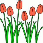 spring_clipart_tulips
